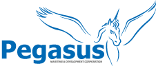Pegasus Corporation